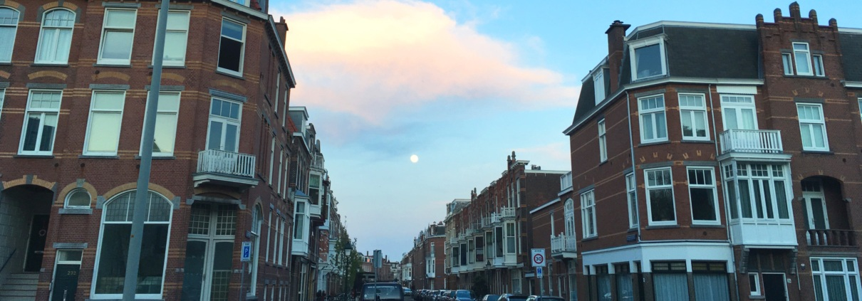 Statenkwartier moon rise