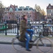 Netherlands dismissal law 2020